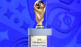 Welches der 32 teilnehmenden Teams wird sich bei der Fußball-WM 2018 bis ins Finale durchkämpfen und den Sieg erringen? (Foto)