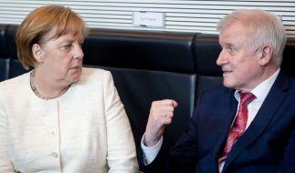 Horst Seehofer (r.) geht im Asylstreit auf Konfrontationskurs mit der Kanzlerin. (Foto)