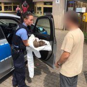 Zwei betrunkene Igel sorgten in Erfurt für einen ungewöhnlichen Polizeieinsatz.
