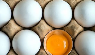 Mehrere Handelsketten rufen Eier wegen Salmonellen-Befalls zurück. (Foto)