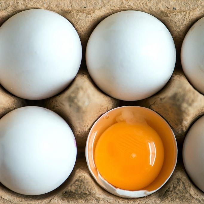 Achtung, Salmonellen! Rückruf von Bio-Eiern in DIESEN Märkten (Foto)