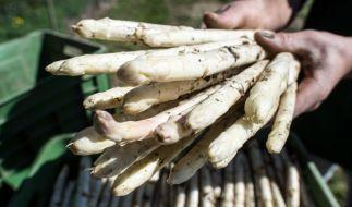 Der Johannistag hat auch für Spargelfans eine ganz besondere Bedeutung. (Foto)