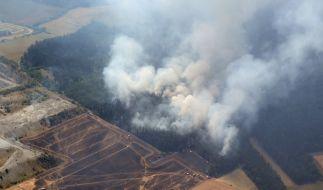 Ein Waldbrand im Weimarer Land ist auf einer Aufnahme aus einem Polizeihubschrauber zu sehen. Die lang anhaltende Hitze hat die Waldbrandgefahr in Thüringen deutlich ansteigen lassen. (Foto)