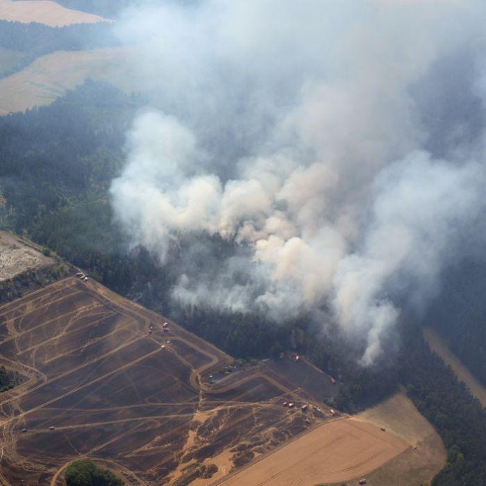 Waldbrände und Ernteausfälle! SO dramatisch ist der Mega-Sommer (Foto)