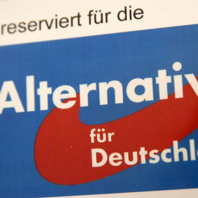 AfD auf Rekordhoch! Asylstreit schadet allen Parteien (Foto)