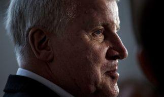 Will Seehofer mit seiner Politik nur die Wähler besänftigen? (Foto)