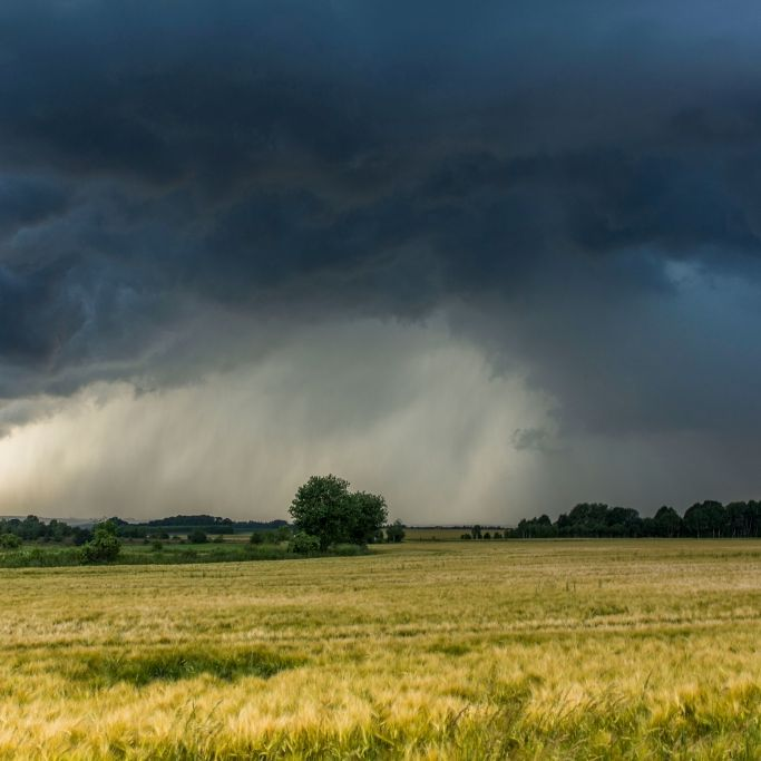 Hurrikan-Alarm in Deutschland! Trifft Chris auf Europa? (Foto)