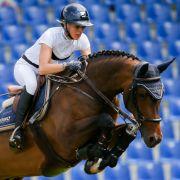 Horror-Unfall! Pferd verletzt Besucher im Zuschauerbereich (Foto)