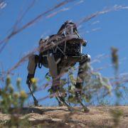 So gefährlich kann künstliche Intelligenz werden (Foto)