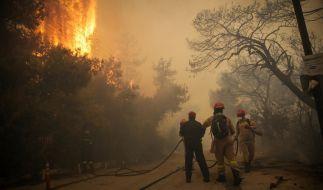 Mindestens 74 Menschen sind bei den außer Kontrolle geratenen Waldbränden nahe Athen ums Leben gekommen. Mehr als 150 Menschen wurden verletzt. (Foto)