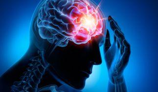 Ein indisches Mädchen litt unter heftigen Kopfschmerzen. Der Grund: Hunderte Bandwurmeier in ihrem Gehirn! (Symbolbild) (Foto)
