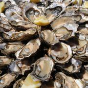 Amputation! Mann isst Meeresfrüchte und verliert Unterarm (Foto)