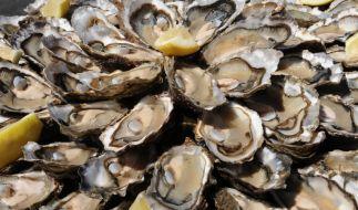 Auch Meeresfrüchte wie Austern können Vibrionen enthalten. (Foto)