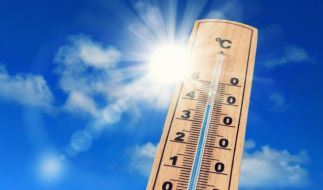 Bei Temperaturen über 36 Grad hilft nur kühlen, oder? (Foto)
