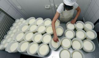Nach dem Fund von Listeria-Bakterien wurde ein in Frankreich produzierter Käse aus Schafs- und Ziegenmilch zurückgerufen, der auch in Deutschland verkauft wurde (Symbolbild). (Foto)