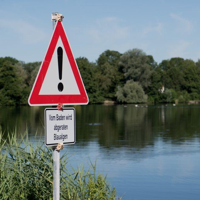 Ekel-Keime in unseren Seen! DARUM ist Baden jetzt extrem gefährlich (Foto)