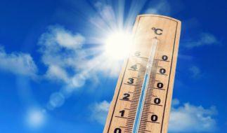 Wird der Sommer 2019 noch heißer als dieses Jahr? (Foto)