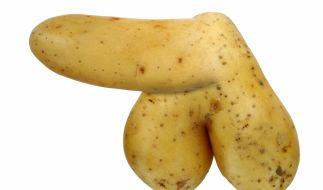 Sind Penisse im Sommer wirklich größer? (Foto)