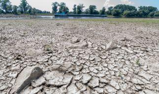 Durch die andauernde Hitzewelle führt die Donau derzeit Niedrigwasser. (Foto)
