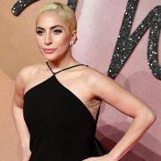Lady Gaga verführt ihre Fans. (Foto)