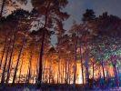 Brandenburg-Feuerim News-Ticker