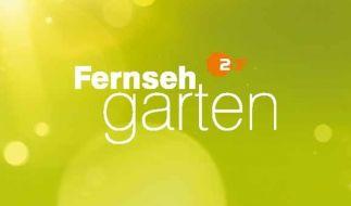 """Der """"ZDF-Fernsehgarten"""" vom 26.08.2018 ließ die Twitter-Gemeinde verstört zurück. (Foto)"""