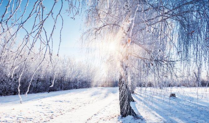 Winter-Wetter 2018