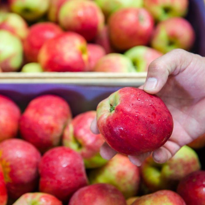 Achtung, krebserregend! Finger weg von DIESEN Äpfeln (Foto)