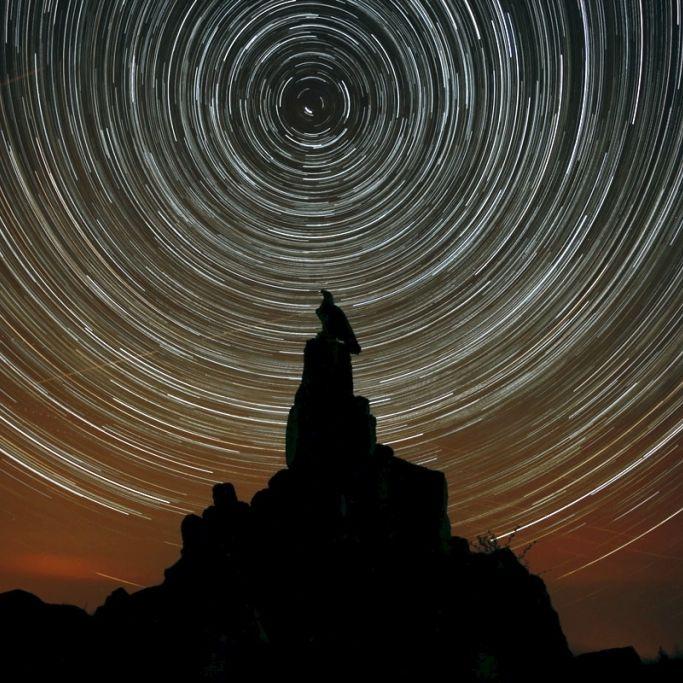 """Hunderte Lichtkugeln und ein """"Fruchtmond"""" erhellen die Nacht! (Foto)"""