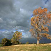 Temperatursturz nach Hitze-Comeback! Kaltfront läutet den Herbst ein (Foto)