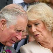 Skandalöse Affäre! Royal lässt schwangere Ehefrau sitzen (Foto)