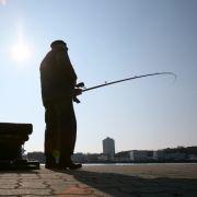 Fliegender Fisch schlitzt Frau die Kehle auf (Foto)