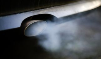 Dieselbesitzer können sich bald auf eine Umtauschprämie freuen. (Foto)