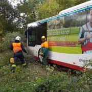 4 Verletzte! Bus rummst in Wald, aber wo war der Fahrer? (Foto)