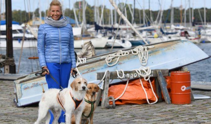 """""""ZDF Fernsehgarten"""" mit Andrea Kiewel"""