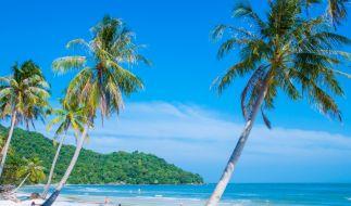 Auf der vietnamesischen Insel Phu-Quoc wollten die Auswanderer Ngoc und Thomas Mildenberger neu anfangen. (Foto)