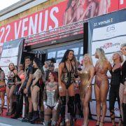 Sie sind die Stars der Venus, aber natürlich hat die Erotikmesse noch weit mehr zu bieten!