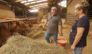 Im Kuhstall scheint Erzieherin Kathrin (48) deutlich weniger Spaß zu verstehen als Bauer Guy. (Foto)