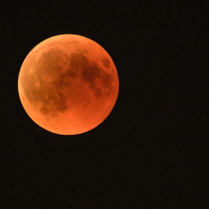 Der Blutmond leuchtete! War der Herbstmond wirklich feuerrot? (Foto)