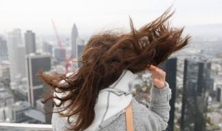 """Die Wetter-Kapriolen von Tief """"Vaia"""" dürften in der letzten Oktober-Woche so manchem die Haare zu Berge stehen lassen. (Foto)"""