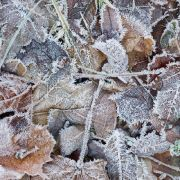 Schnee und Glätte! Polarluft lässt Deutschland zittern (Foto)