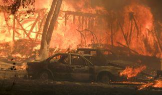 Waldbrände in Kalifornien: Abgebrannte Autos nahe Malibu Lake. (Foto)