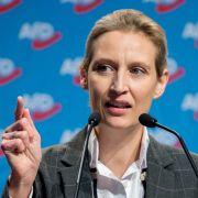 Spendenaffäre um AfD-Fraktionschefin Weidel zieht weitere Kreise (Foto)