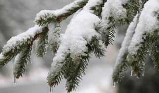 Droht uns jetzt Winter-Wetter? (Foto)