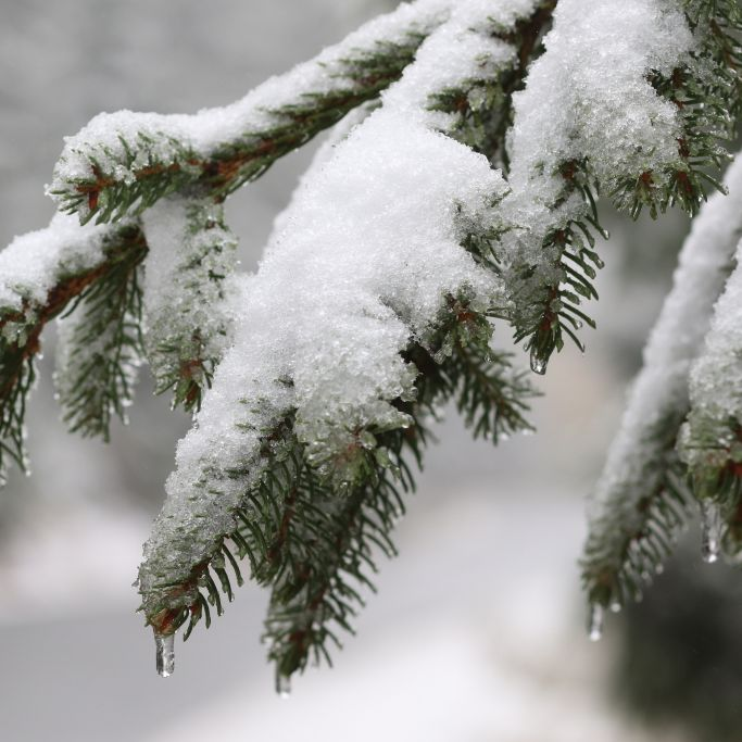 Heftiger Temperatursturz! Kälte-Peitsche lässt Deutschland zittern (Foto)