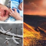 Kältewalze! Schnee und Eis im Anmarsch // Affe tötet 12 Tage altes Baby // Astronomen entdecken Supererde (Foto)