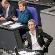 Alice Weidel attackiert Merkel! Kanzlerin verteidigt Migrationspakt (Foto)