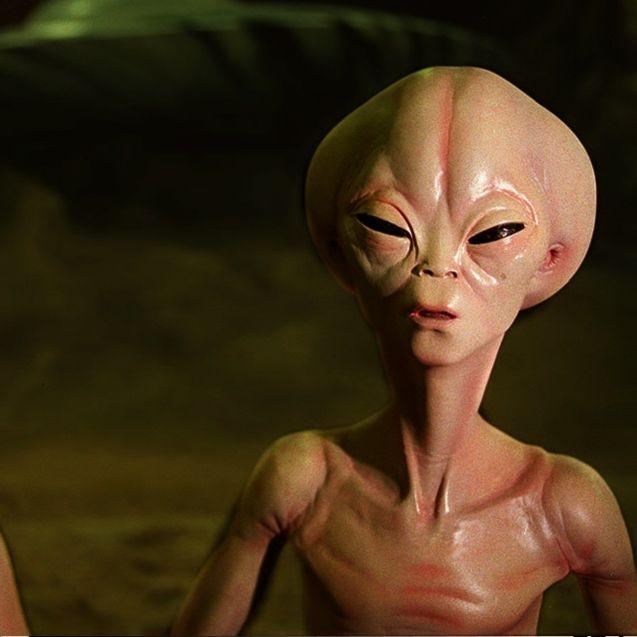 Aliens leben schon lange unter uns (Foto)