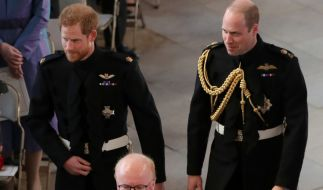 Ist ein Bruch zwischen Prinz Harry und Prinz William für den angeblichen Zickenkrieg zwischen Meghan Markle und Kate Middleton verantwortlich? (Foto)