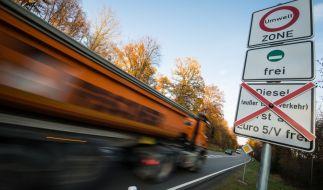 Schilder an einer Straße weisen auf geplante Fahrverbote für ältere Dieselfahrzeuge hin. (Foto)